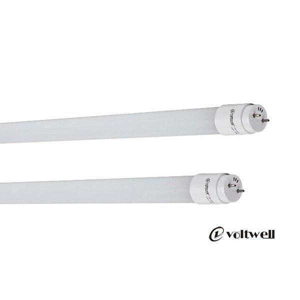 Cheapest Price Led Tube Light T8 14W