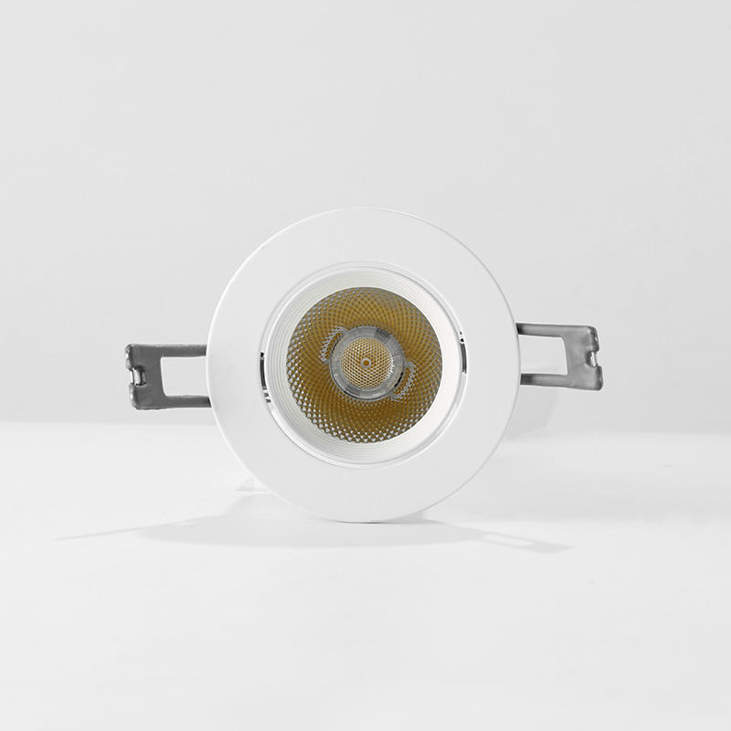 5 CCT adjustable downlight